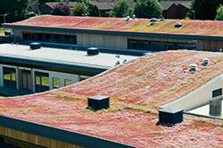 Roofdek Blog The Tata Steel Roofdek Blog